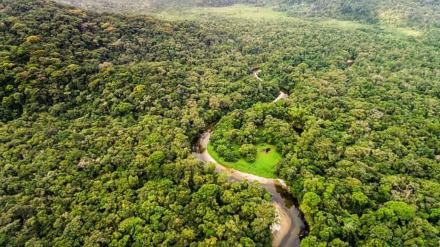 Altos niveles plomo en población indígena Amazonía peruana