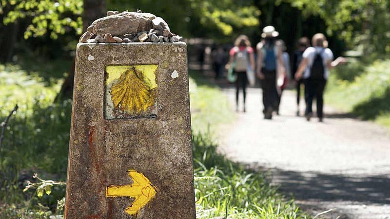 El gallo que no cesa - Los peregrinos vuelven a hacer el Camino de Santiago - Escuchar ahora