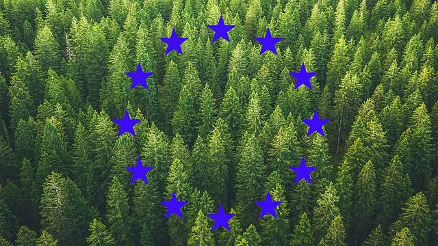 Histórica ratificación de la ley europea del clima