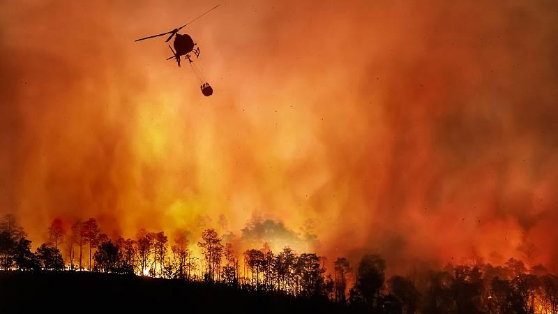 Más cerca - Incendios forestales: prevenir antes que tener que extinguir - Escuchar ahora
