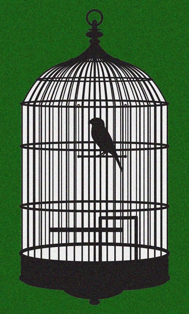 Cançons de presos i presons