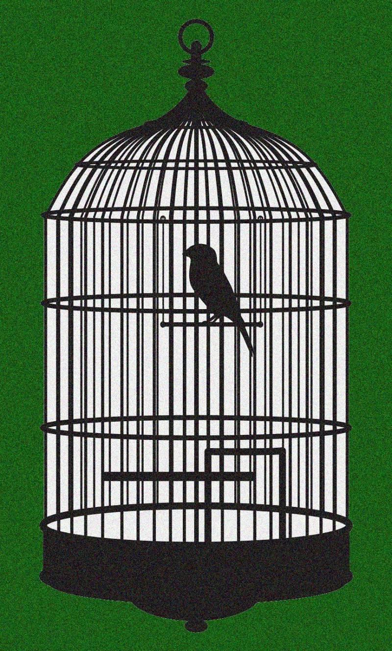 Club Trébol - Cançons de presos i presons - Escoltar Ara