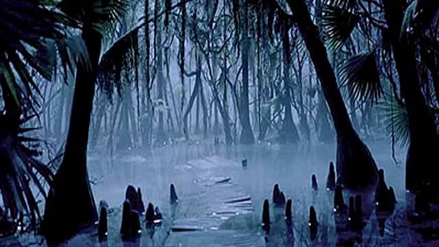 Cap. 70; Swamp Rock (1966-1973)