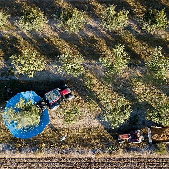 Artistes amb tractor