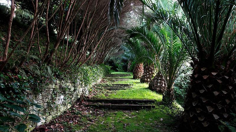 Marca España - Recorremos el Bosque-Jardín de la Fonte Baxa - 30/07/21 - escuchar ahora
