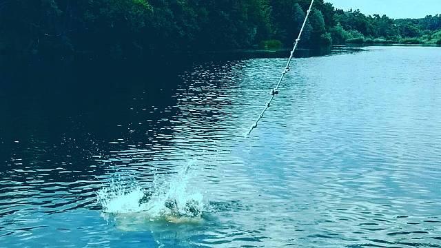 Amordiscos - A la orilla del río