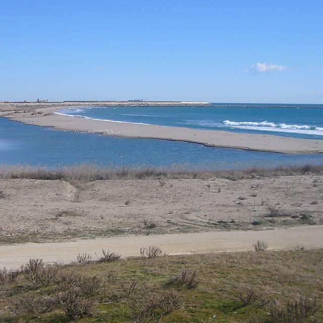 Vida Verda - Viure a prop del Delta del Llobregat