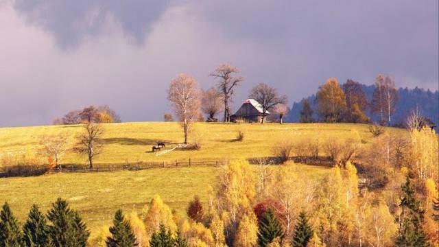 Desde esta colina, de Sue Hubbell