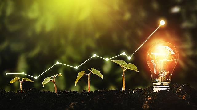 Comunicar la sostenibilidad