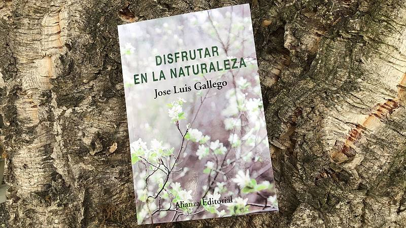Atriles entre los árboles - Disfrutar en la naturaleza - 25/07/21 - escuchar ahora