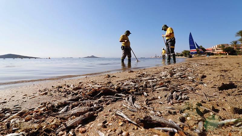"""24 horas - """"El Mar Menor se recuperará si se regulan los vertidos"""" - Escuchar ahora"""