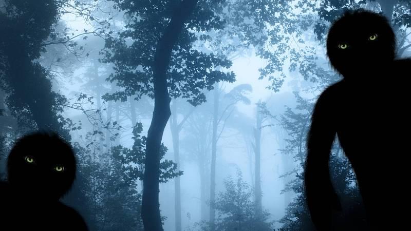 Espacio en blanco - Animales invisibles - 29/08/21 - escuchar ahora