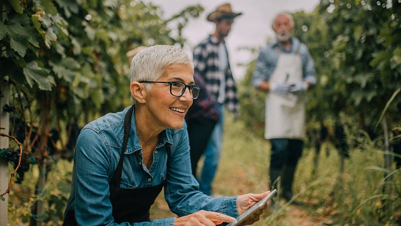Por tres razones - ¿Cómo afectan las diferencias intergeneracionales en el trabajo? - Escuchar ahora