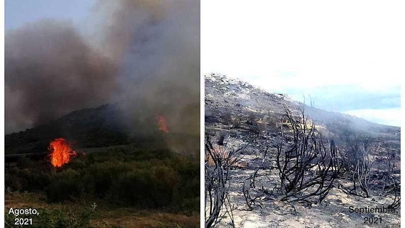 Por tres razones - Navalacruz, zona cero del incendio de Ávila, un mes después - 08/09/21 - Escuchar ahora
