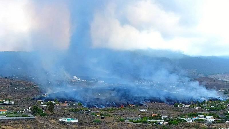 """24 horas - La industria platanera pide """"rapidez"""" y """"habilidad"""" para paliar las consecuencias de la erupción - Esuchar ahora"""