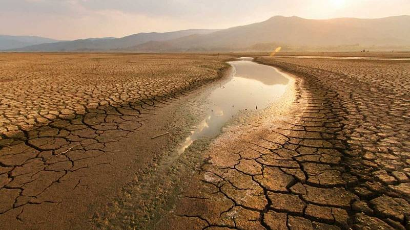 14 horas - Expertos piden integrar el cambio climático en los planes de recuperación COVID-19 - Escuchar ahora