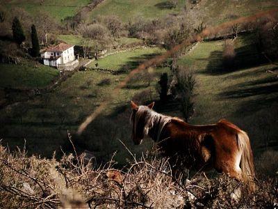 Asturias III