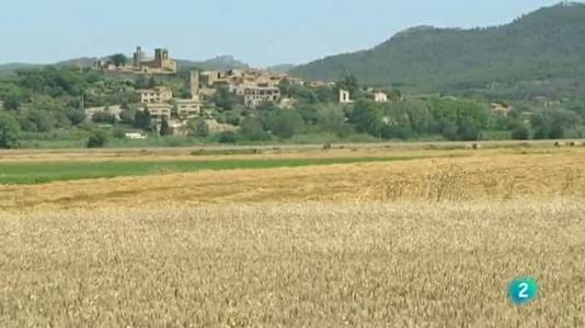 El Baix Empordà medieval