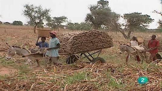 Mundo Dogón (Mali)