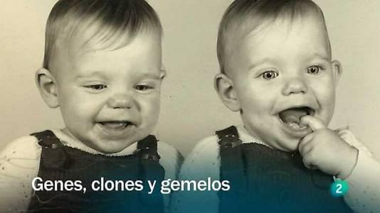 Genes, clones y gemelos