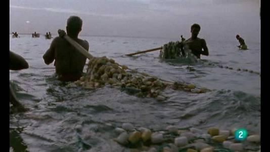 Mauritania, pescadores del desierto