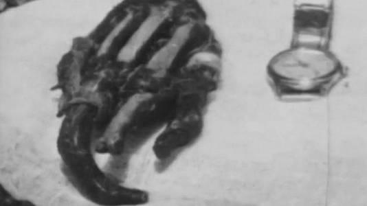 El yeti y otros mitos