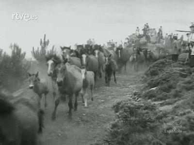 RESUMEN DE LA ACTUALIDAD ESPAÑOLA EN 1956