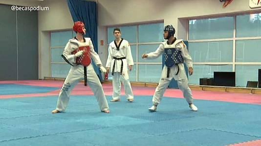 Capítulo 14. Taekwondo