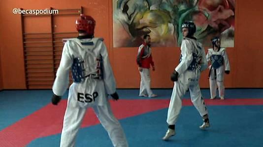 Capítulo 26. Taekwondo