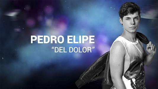 """Pedro Elipe canta """"Del dolor"""""""