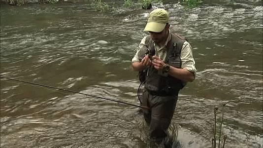 Pesca con campeones