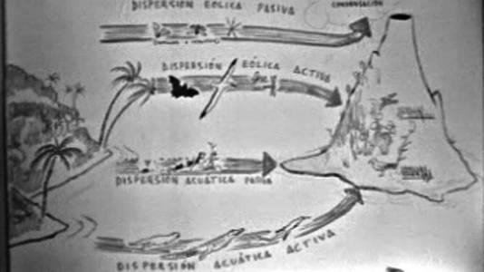 Las islas Galápagos (I)