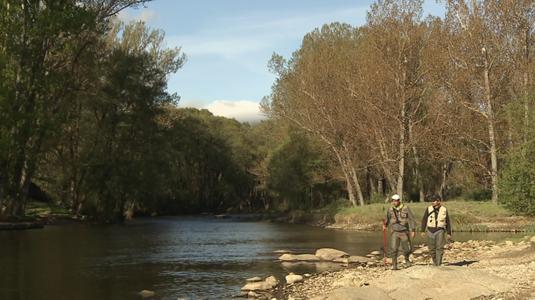 El remonte del rio Alberche