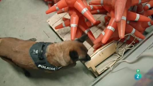 La Unitat Canina dels Mossos d'Esquadra
