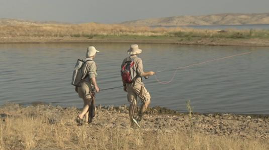 Pesca a mosca en La Serena