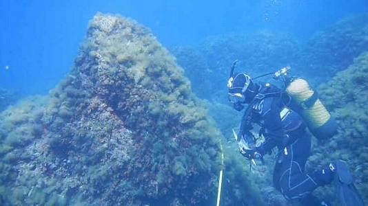 Copiando la naturaleza y Oceanografía de proximidad