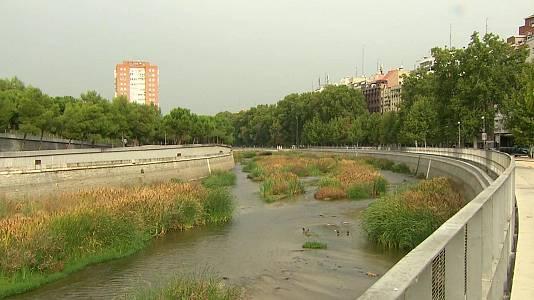 Ciudadano Río