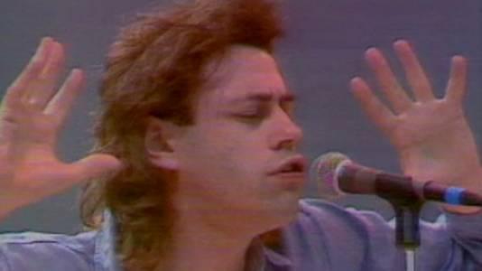 Resumen del año 1985 (II)