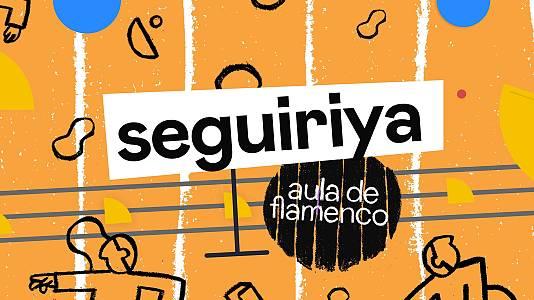 Seguiriya | Aprende flamenco con Daniel Doña