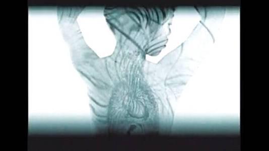 Vídeo y Arte digital 2000 (INJUVE 2000)