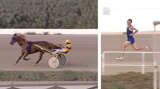 Desafío atleta vs caballo