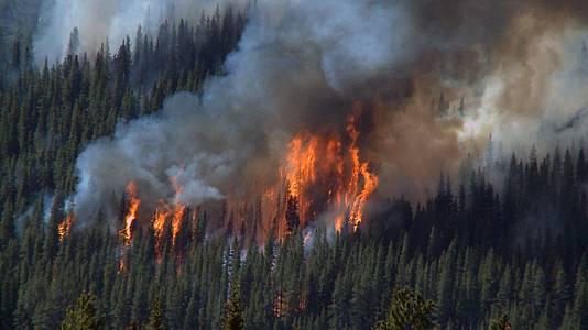 El poder del fuego. La Tierra está ardiendo