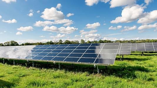 Agricultura y ganadería entre paneles solares