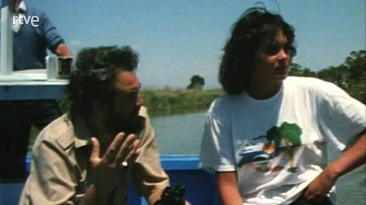 El delta del Ebro