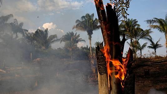 La Amazonía brasileña sufre récord de incendios en 14 años