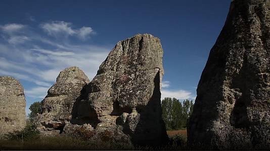 Bosques de piedra