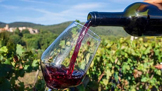 ¿Cómo se debe tomar el vino en verano? ¡Te lo contamos!