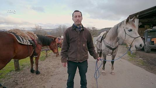 Apicultor (Lugo) y veterinarios (Burgos)