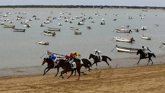 Así se preparan los caballos de las carreras de Sanlúcar