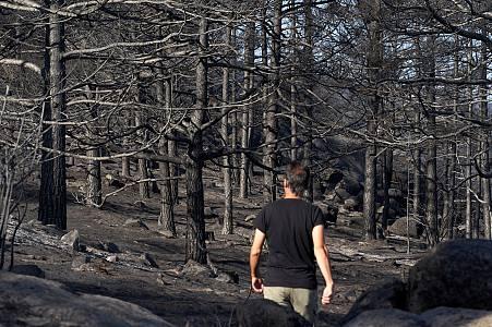 La vida en Ávila tras vivir uno de los mayores incendios